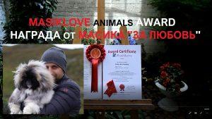 BADBOY LOVE COMMENDATION AWARDS FOR ANIMALS